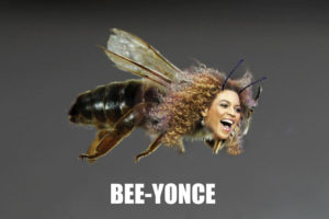 Join the Beyhive for Endangered Bees