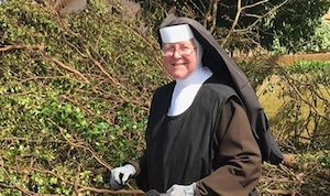 Chainsaw Nun hurricane irma